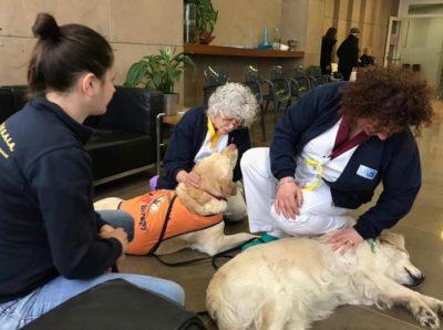 La Pet Therapy a sostegno dei pazienti oncologici del Valdarno