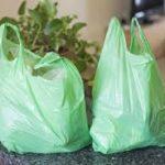 L'inquinamento da buste biodegradabili provoca anomalie e ritardi nella crescita delle piante