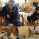 Pet Therapy in Hospice a Cremona