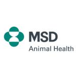 L'approccio One Health è indispensabile per proteggere animali domestici e pet owner dai cambiamenti stagionali