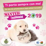 Campagna social contro l'abbandono degli animali