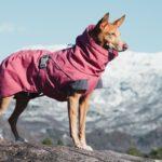 Hurtta presenta la giacca outdoor Expedition Parka