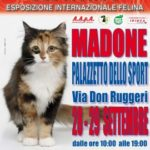 Esposizione Internazionale Felina a Madone