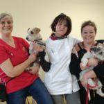 A Cona riparte il progetto di pet therapy organizzato da ChiaraMilla