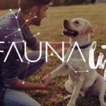E' italiano il primo cane al mondo registrato con la tecnologia blockchain