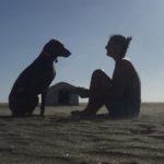 Dog Manager: al via il primo corso a tema targato Baubeach