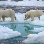 Polo Nord: presto libero dai ghiacci in estate