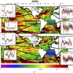 Il nesso cruciale tra clima, risalita delle acque profonde ed ecosistemi marini