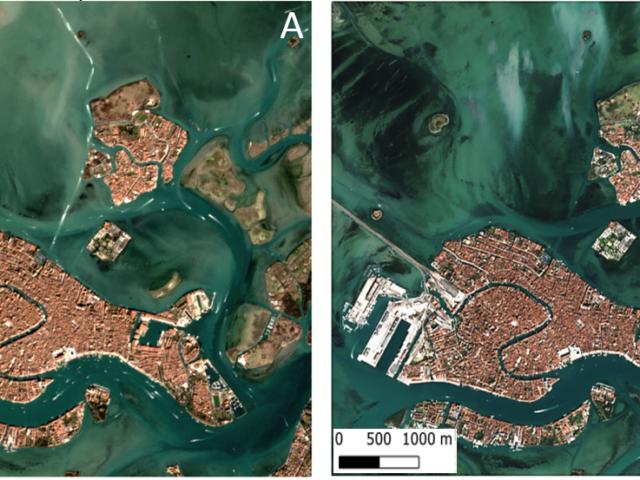 La trasparenza delle acque di Venezia durante il lockdown