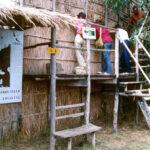 WWF e YAC – Young Architects Competitions: un concorso di idee per l'oasi di Orbetello