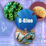 Italia nel progetto da 1,5 milioni di euro per l'hub delle 'biotecnologie blu'