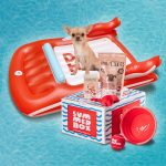 Dog Heroes lancia la prima summer box