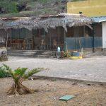 Nasce la prima area al mondo completamente Leishmania FREE