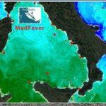 Una rete di termometri per misurare la 'febbre' del mare