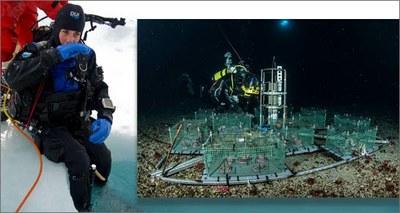 Antartide: primi dati dal laboratorio sottomarino del Mare di Ross