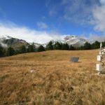 Identificati i tre fattori principali che controllano il comportamento e le risposte degli ecosistemi terrestri