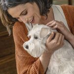 Giornata Mondiale degli Animali: i falsi miti su cani e gatti